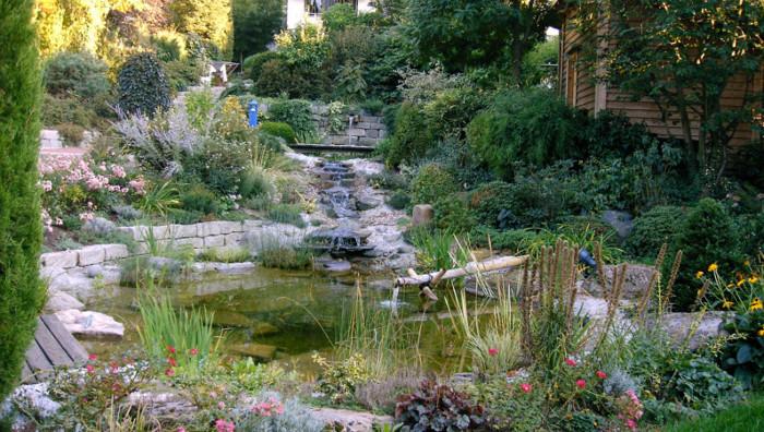 Übersicht - Naturnahe Teichanlagen