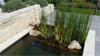 Zeitgemäße Gartengestaltung - Bergmann Galabau